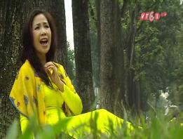 Embedded thumbnail for Giấc mơ mùa lá - Trần Mạnh Hùng